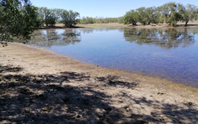 Meet the Aboriginal family fighting to save the Murray-Darling Basin