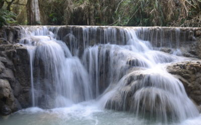 Bending Towards Water Justice – 'valuing' water and World Water Day 2021