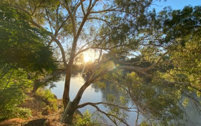Aboriginal water values and management in northern Australia